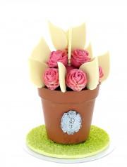 pot de fleurs:  en chocolat noir  et garni de coeur praliné